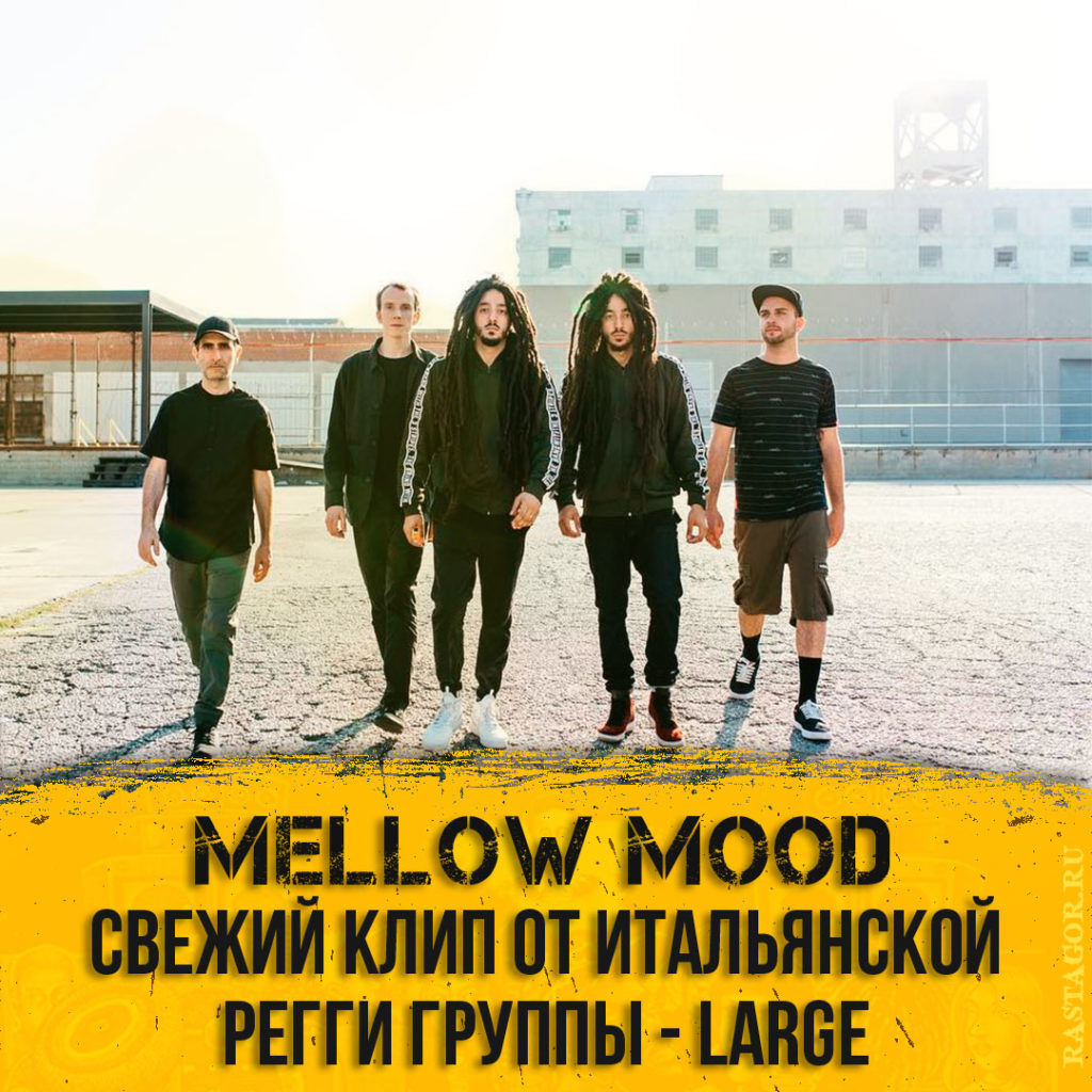 Mellow Mood - Large